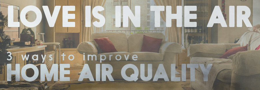 Love is in the Air! 3 Ways to Improve Your Home's Air Quality