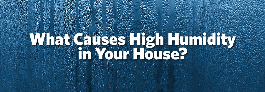 What Should Humidity Be In A House 28 Images What Is