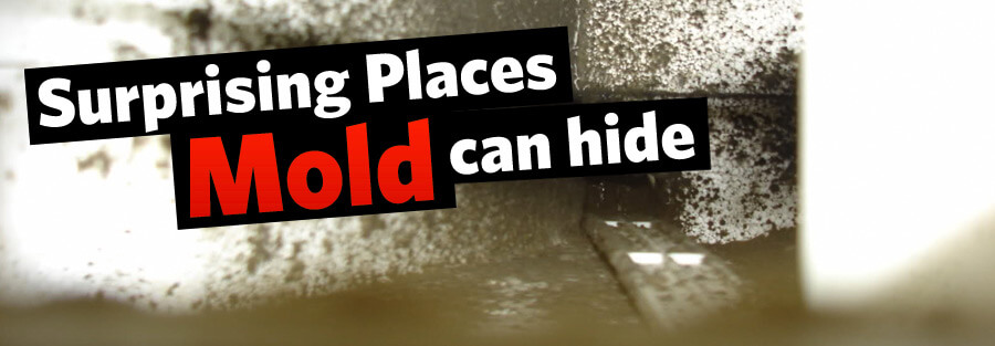 Surprising Places Mold Can Hide in Your HVAC System